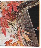 Poison Wood Print by Beverly Hammond