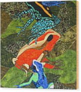 Poison Dart Frogs Wood Print
