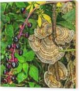 Poke And Bracket Fungi Wood Print