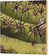 Poke Wood Print by Susan Hernandez