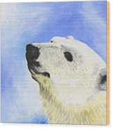 Polar Bear Wood Print