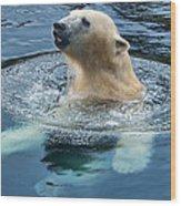 Polar Bear Swim In Cold Water Wood Print