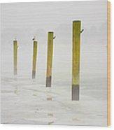 Poles Wood Print