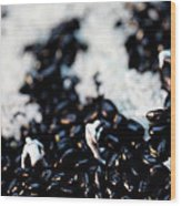 Police Investigating Question Mark On Bean Field Wood Print