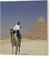 Police Officer On A Camel In Front Of Pyramid In Cairo Egypt Wood Print
