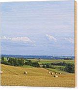 Polish Field Wood Print