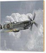 Polish Spitfire Ace Wood Print