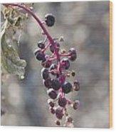 Polk Berries Wood Print