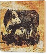 Polled Herford Bull 22 Wood Print