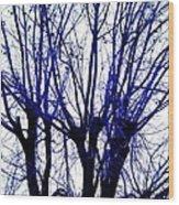 Vessels Of Blue Wood Print