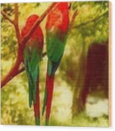 New Orleans Polly Wants Two Crackers At New Orleans Louisiana Zoological Gardens  Wood Print
