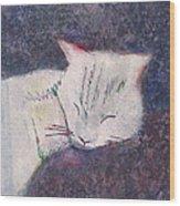 Poloma Sleep2 Wood Print