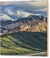 Polychrome Pass Wood Print