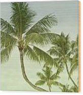 Polynesia Palm Trees Wood Print
