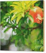 Pomegranate On A Tree Wood Print
