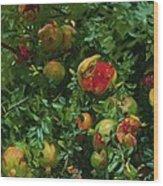 Pomegranates    Majorca Wood Print