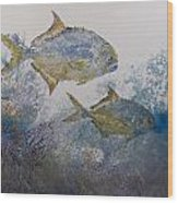 Pompano And Sea Fans Wood Print by Nancy Gorr