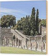 Pompeii 2 Wood Print