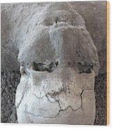 Pompeii Ash Skeleton Wood Print by Gregory Dyer