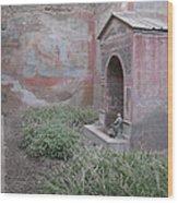 Pompeii Dry Fountain Wood Print