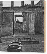 Pompeii Urns Wood Print by Marion Galt