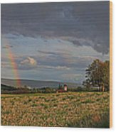 Pompey Center Rainbow Wood Print