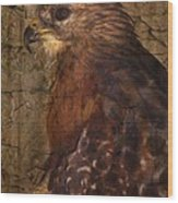 Ponce Inlet Hawk Wood Print
