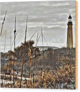 Ponce Inlet Lighthouse From The Dunes Wood Print