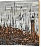 Ponce Inlet Lighthouse In Sea Grass Wood Print