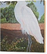 Ponce Point Egret Wood Print