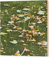 Pond 2 Wood Print