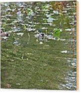 Pond 4 Wood Print