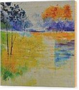 Pond 883120 Wood Print