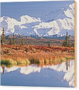 Pond, Alaska Range, Denali National Wood Print