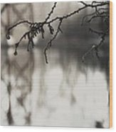 Pond And Trestle Wood Print