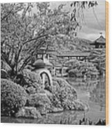 Pond At Heian Shrine - Kyoto Wood Print