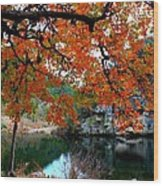 Fall At Lost Maples State Natural Area Wood Print