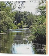 Pond At Tifft Nature Preserve Buffalo New York  Wood Print