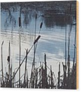 Pond At Twilight Wood Print