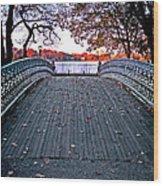 Pond Footbridge Wood Print