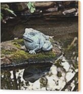 Pond Frog Statuette Wood Print