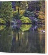 Pond In The Park Oil Paint  2721gop   Wood Print
