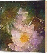 Pond Lily 23 Wood Print