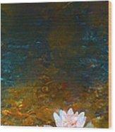 Pond Lily 27 Wood Print