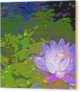 Pond Lily 29 Wood Print