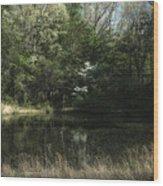 Pond Of Dreams Wood Print by Paul Herrmann