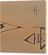 Pond Reeds Sunrise 3 Wood Print