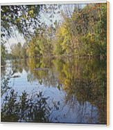 Pond Reflection At Limehouse Ontario Wood Print