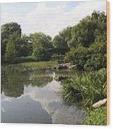 Pond Reflection - Central Park Wood Print