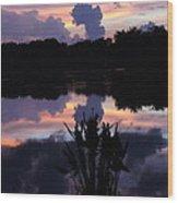 Pond Reflection Wood Print